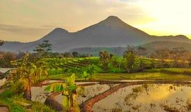 Montaña de Penanggungan imágenes de archivo libres de regalías