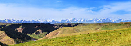 Montaña de Qilian Imágenes de archivo libres de regalías