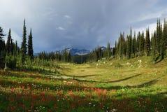 Montaña de Revelstoke Imagen de archivo