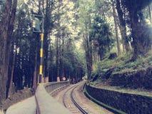 Montaña de Taiwán Alishan- Ali Imagen de archivo libre de regalías