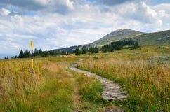 Montaña de Vitosha Fotos de archivo libres de regalías