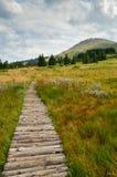 Montaña de Vitosha Fotografía de archivo