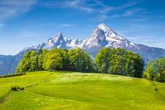 Montaña de Watzmann con los prados verdes en la primavera, Baviera, Alemania Foto de archivo