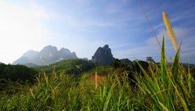 Montaña del campo con azul claro Fotos de archivo libres de regalías
