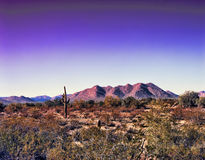 Montaña del desierto imagenes de archivo