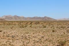 Montaña del desierto Fotos de archivo