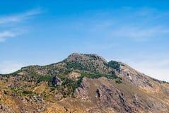Montaña del desierto con los árboles escasos Fotos de archivo