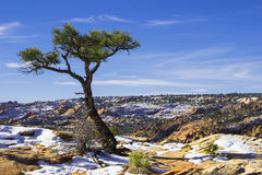 Montaña del desierto Nevado Fotos de archivo libres de regalías