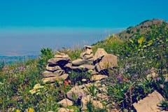 Montaña del diseño de la roca de las flores salvajes Fotografía de archivo libre de regalías