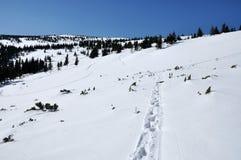 Montaña del invierno Fotografía de archivo libre de regalías