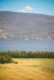 Montaña del lago field Fotografía de archivo