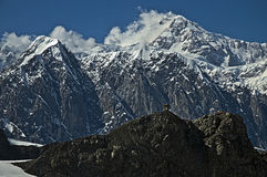 Montaña del Mt McKinley Imagenes de archivo