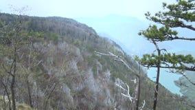 Montaña del paisaje en tiempo de verano almacen de video