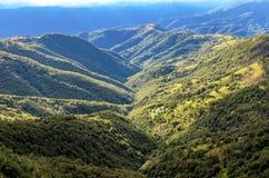 Montaña del planina de Stara en Serbia Imágenes de archivo libres de regalías