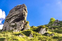 Montaña del planina de Stara en Serbia Fotografía de archivo