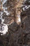 Montaña del río de Deschutes Fotografía de archivo libre de regalías