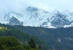 Montaña del verano con la nieve (Suiza) Fotos de archivo