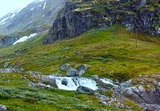 Montaña del verano (Noruega) Fotos de archivo