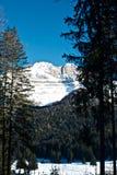 Montaña - dolomía - Madonna di Camiglio Imagen de archivo