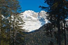 Montaña - dolomía - Madonna di Camiglio Fotos de archivo libres de regalías