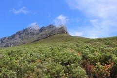 Montaña en Cape Town Suráfrica en verano Imagenes de archivo