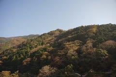 Montaña en color del otoño Fotografía de archivo
