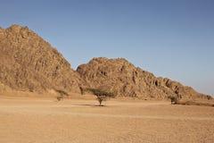 Montaña en el desierto Fotografía de archivo