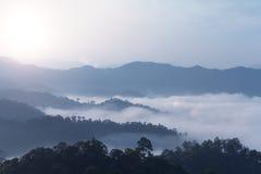 Montaña en la niebla del bosque Imagenes de archivo