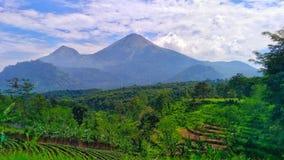 Montaña en países tropicales Foto de archivo libre de regalías