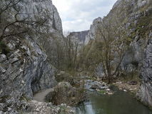 Montaña en Rumania Fotografía de archivo libre de regalías