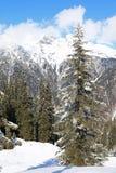 Montaña en Vorarlberg Fotografía de archivo libre de regalías