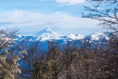 Montaña entre los árboles 02 Imagenes de archivo