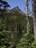Montaña escarpada de la cascada Fotos de archivo