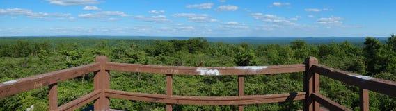 Montaña Forest Panorama Fotografía de archivo