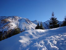 Montaña fría Fotografía de archivo libre de regalías