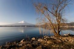 Montaña Fuji Fotos de archivo