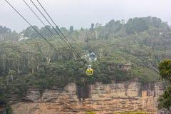Montaña hermosa de la hierba del árbol de la curva de Australia Sydney Imagen de archivo