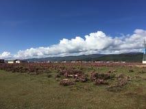 Montaña hermosa del cielo del prado de Shangri-La imagen de archivo