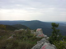 Montaña Homolje Foto de archivo
