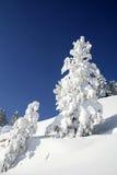 Montaña, invierno, nieve y cielo fotos de archivo