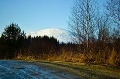 Montaña konjac Imagen de archivo libre de regalías