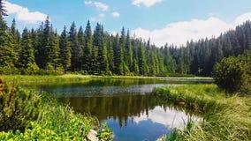 Montaña, lago, nubes y árboles del lapso de tiempo metrajes
