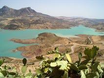 Montaña, lago y cactos Imagen de archivo libre de regalías