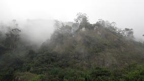 Montaña stock images