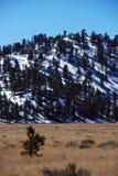 Montaña nevada Fotografía de archivo