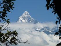 Montaña nevada de la espina de pescado, gama de Annapurna, Nepal, enmarcado por las ramas. Imagen de archivo