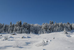Montaña Nevado Imagenes de archivo