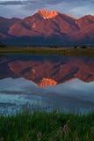 Montaña púrpura enorme Fotografía de archivo