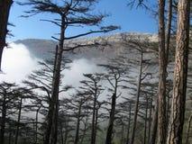 Montaña panorámica Fotos de archivo libres de regalías