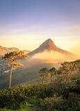 Montaña principal de los leones Imagenes de archivo